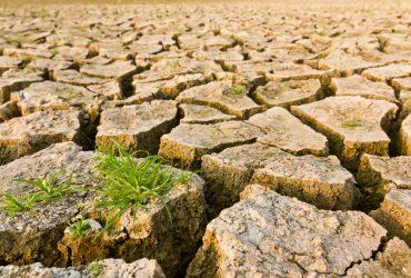Objavljen Poziv na dostavu projektnih prijedloga Shema za jačanje primijenjenih istraživanja za mjere prilagodbe klimatskim promjenama