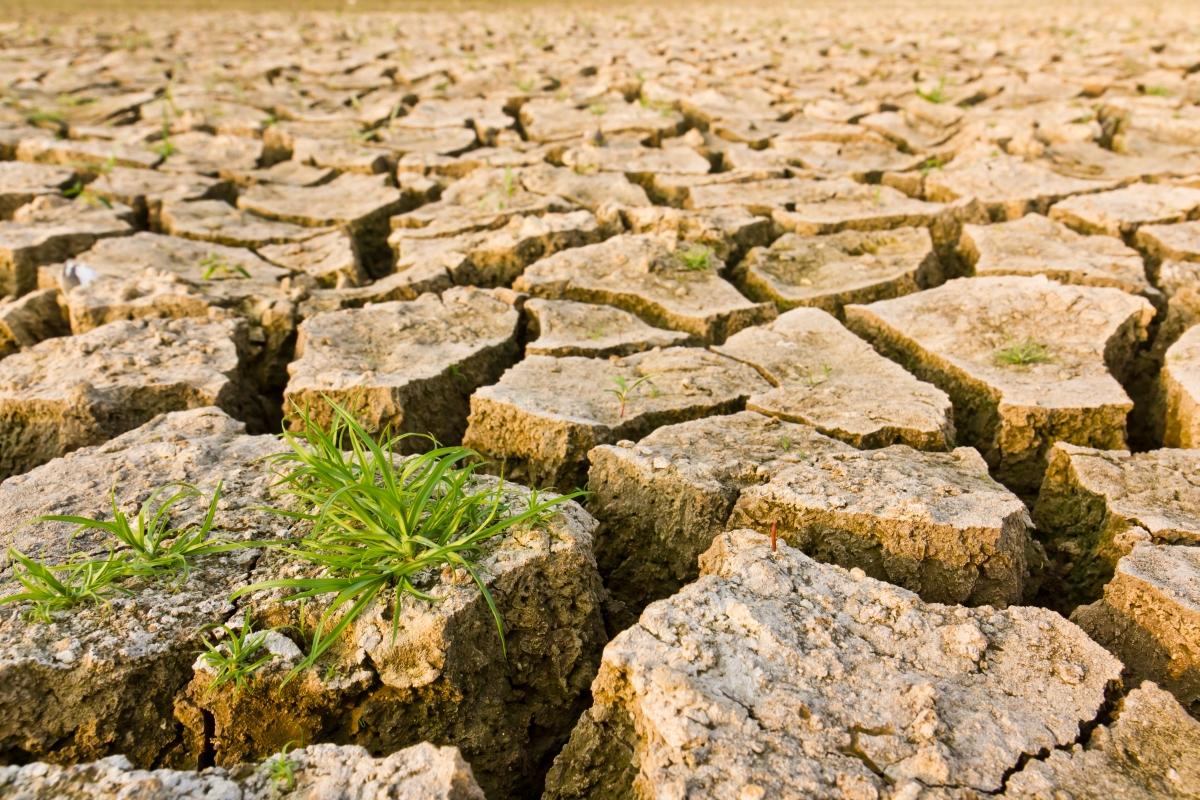 Najava ponovnog otvaranja Poziva na dostavu projektnih prijedloga Shema za jačanje primijenjenih istraživanja za mjere prilagodbe klimatskim promjenama