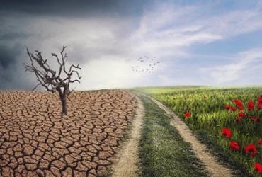 Prilagodba poljoprivrede klimatskim promjenama