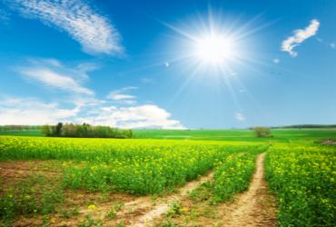 Hoće li ovo biti najtoplija godina u povijesti?