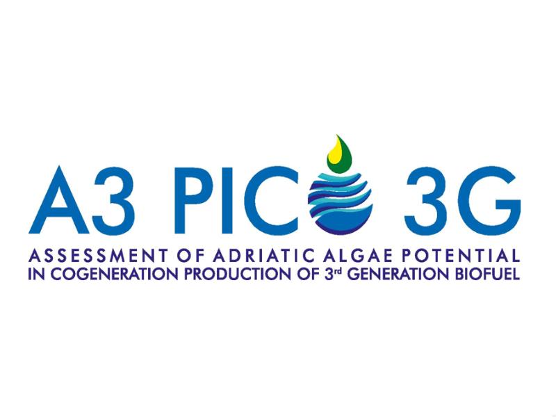 A3-PICO-3G: Procjena potencijala jadranskih algi za ko-generacijsku proizvodnju biogoriva 3. generacije