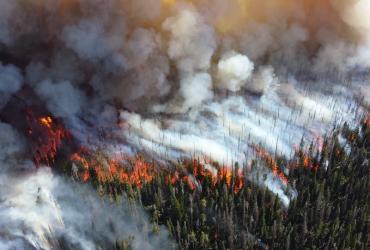 Utjecaj klimatskih promjena na učestalost požara