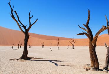 Postoji vjerojatnost da će oko 3,5 milijardi ljudi živjeti u pustinjskoj klimi